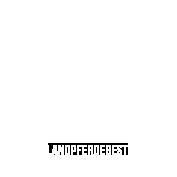 Islandpferdegestüt Birkenhof Logo